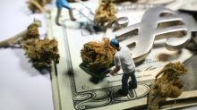 Why the Biggest Marijuana Stock Could Also Be the Biggest Bargain