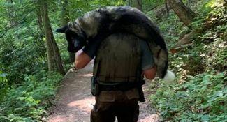 45kg大狗扛上肩 徒步1hr得救了