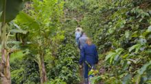 New Sustainability Report from S&D Coffee & Tea® Demonstrates Significant Progress