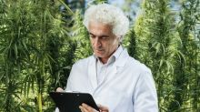 2 Must-Read Quotes on Marijuana From FDA Head Scott Gottlieb