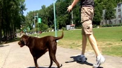 Keeping Pet Waste Out of Lake Champlain