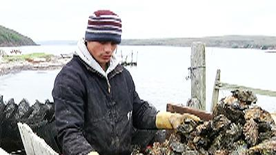 Oysterman, environmentalists face off over shore