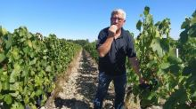 """""""On a 30 000litres de plus que d'habitude"""": les viticulteurs n'arrivent pas à écouler leurs stocks d'avant coronavirus"""