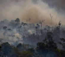 Scientists and environmental groups 'alarmed' by huge rise in Amazon wildfires