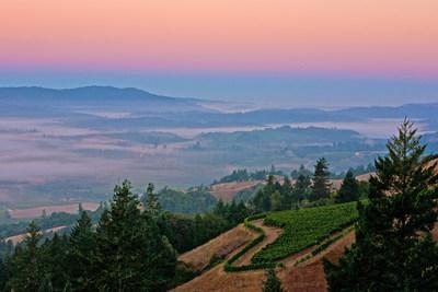 Summer Travel on California Wine Country Back Roads