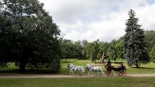 Habsburg stud farm rides to UNESCO world heritage status