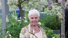 Judi Dench says failing eyesight saved her from fear during crocodile encounter