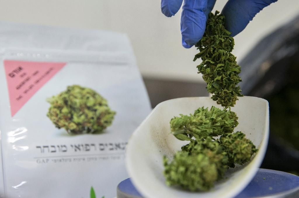 Israel gives green light for medical cannabis exports