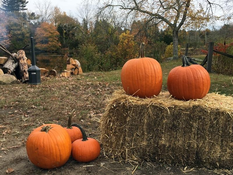 Tuesday is the first day of autumn, and pumpkins, hay rides, beer-swilling, hiking, biking and camping are among activities that can be had.