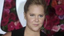 Amy Schumer, Pink mock Trump over rally turnout: 'What that arena looked like when it has people in it'