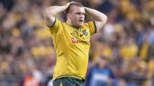 Wallabies' Robertson to have knee surgery