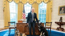 The White House has 132 rooms and its own restaurant. Here's what it's like inside Joe Biden's new home.