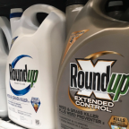Everything you need to know about Roundup weed killer and possible cancer risk