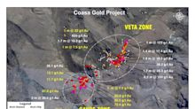 Palamina's Coasa Gold Project Returns Select Grab Samples with Values up to 75.4 g/t Gold from the Cayos Zone