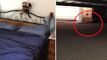 'My worst nightmare': Terrifying discovery under couple's bed