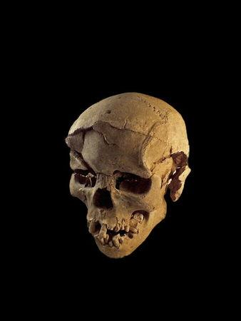 Skull of a man found lying prone in the sediments of a lagoon 30km west of Lake Turkana, Kenya, at a place called Nataruk, is pictured in this undated handout photo obtained by Reuters January 20, 2016.REUTERS/Marta Mirazon Lahr/Cambridge University/Handout via Reuters