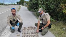They were stopped for speeding in the Keys. Then police smelled something fishy