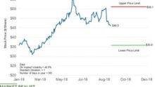 How High or Low Could Delek Stock Move until the Year's End?