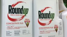 First trial over Roundup weed killer cancer claim under way