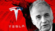 Tesla will mark the beginning of the end for this bull market, warns Ralph Nader