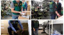 Desmantelada en Málaga la primera fábrica de tabaco subterránea de Europa