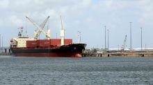 Brownsville LNG plant lands Abu Dhabi investment