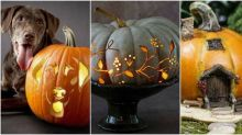 23 pumpkin carving ideas for countryside lovers