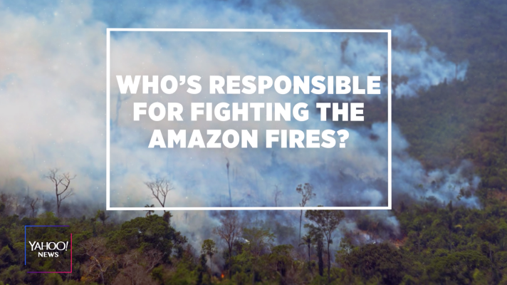 Who's responsible for fighting the Amazon fires?