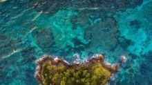 Princess Cruises and Fathom - Cruise For the Caribbean