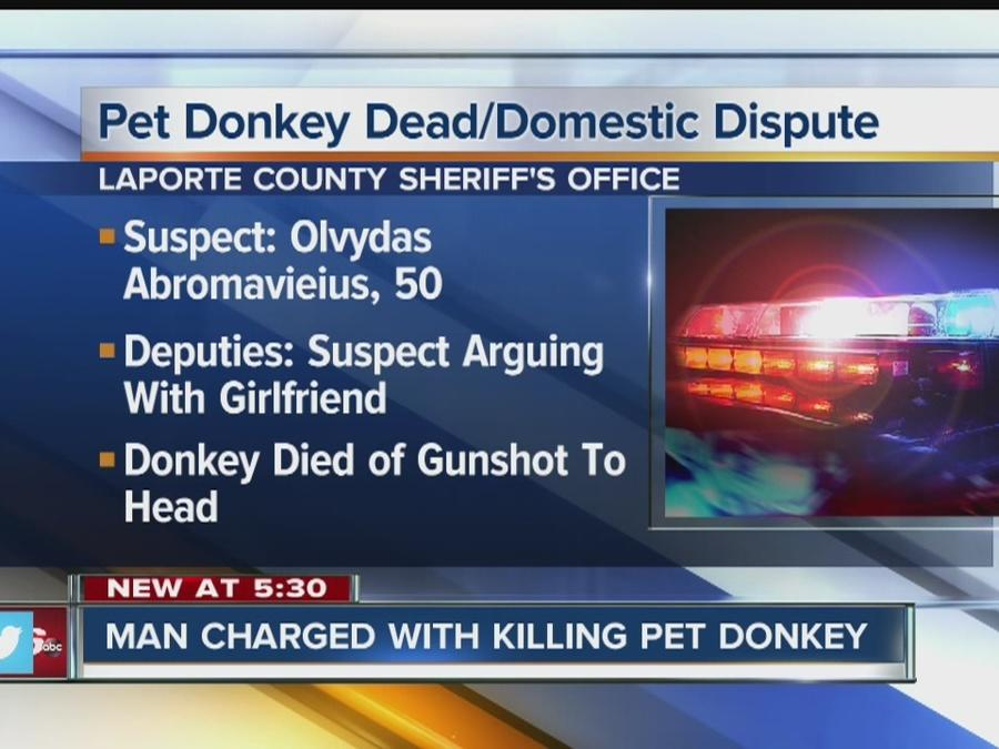 Man facing charges for killing donkey during domestic for Laporte county offices