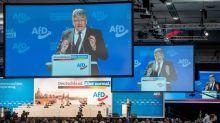 AfD setzt im Wahlkampf auf Image als Anti-Verbotspartei