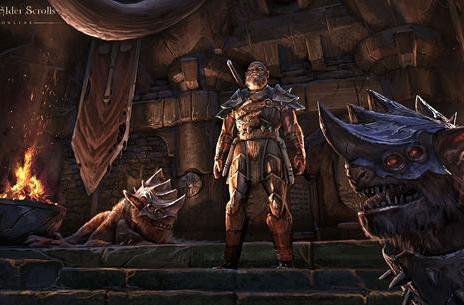 Elder Scrolls' fourth major update teased in new concept art