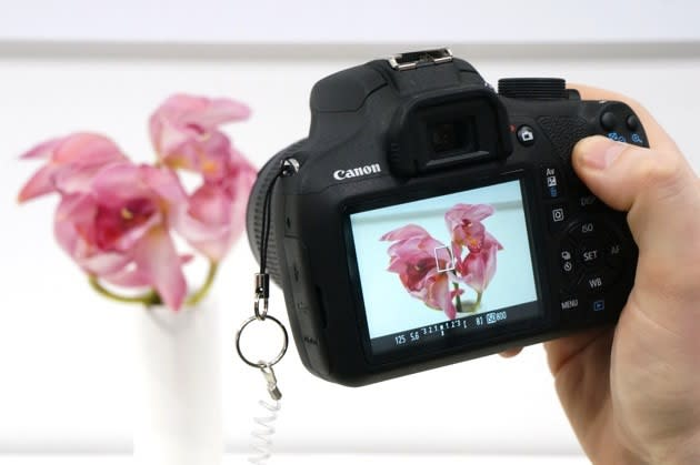 Canon serves up its own cloud-based image repository