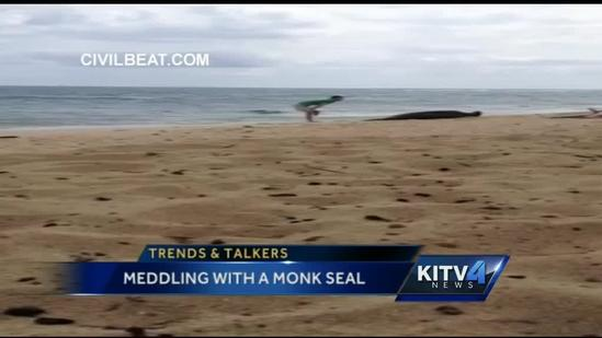 Trends & Talkers: Man meddles with Monk seal