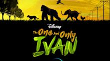 Angelina Jolie, Sam Rockwell, more voice wildlife revolt in One and Only Ivan trailer