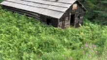 Historic Kootenay cabin burns to the ground after restoration project completed