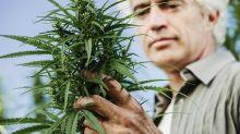 Marijuana Stock Tilray Tapped For U.S. CBD Study On Alcoholism, PTSD