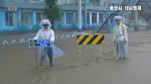 Floods, strong winds and fallen trees as typhoon strikes North Korea
