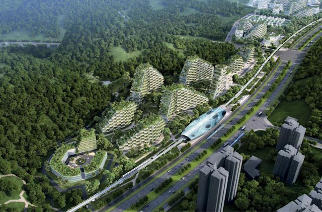 A city covered in trees will fight air pollution in China