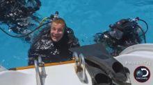Rob Gronkowski on Shark Week: 'I'm keeping my hands in my pants'
