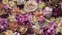 Valentinstag: Last Minute Blumen bestellen