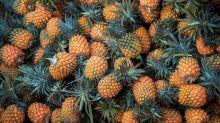 Vuoi una borsa di pelle ecologica? Compra un ananas!