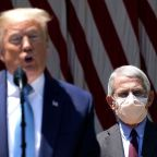 Fauci says he's frustrated that people at Trump's campaign events don't wear face masks, calling for the 'universal wearing' of them