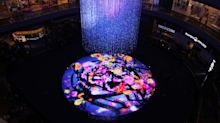 Singapore is the only place for our futuristic ideas, says Japanese art collective teamLab