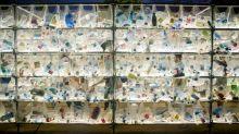 """""""Effektives Plastikrecycling ist eine Riesenaufgabe und ein Megatrend"""""""