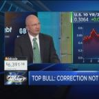 The biggest bull on Wall Street says the market correctio...