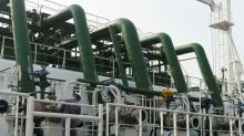 China's biggest liquefied gas importer suspends some contracts as virus spreads