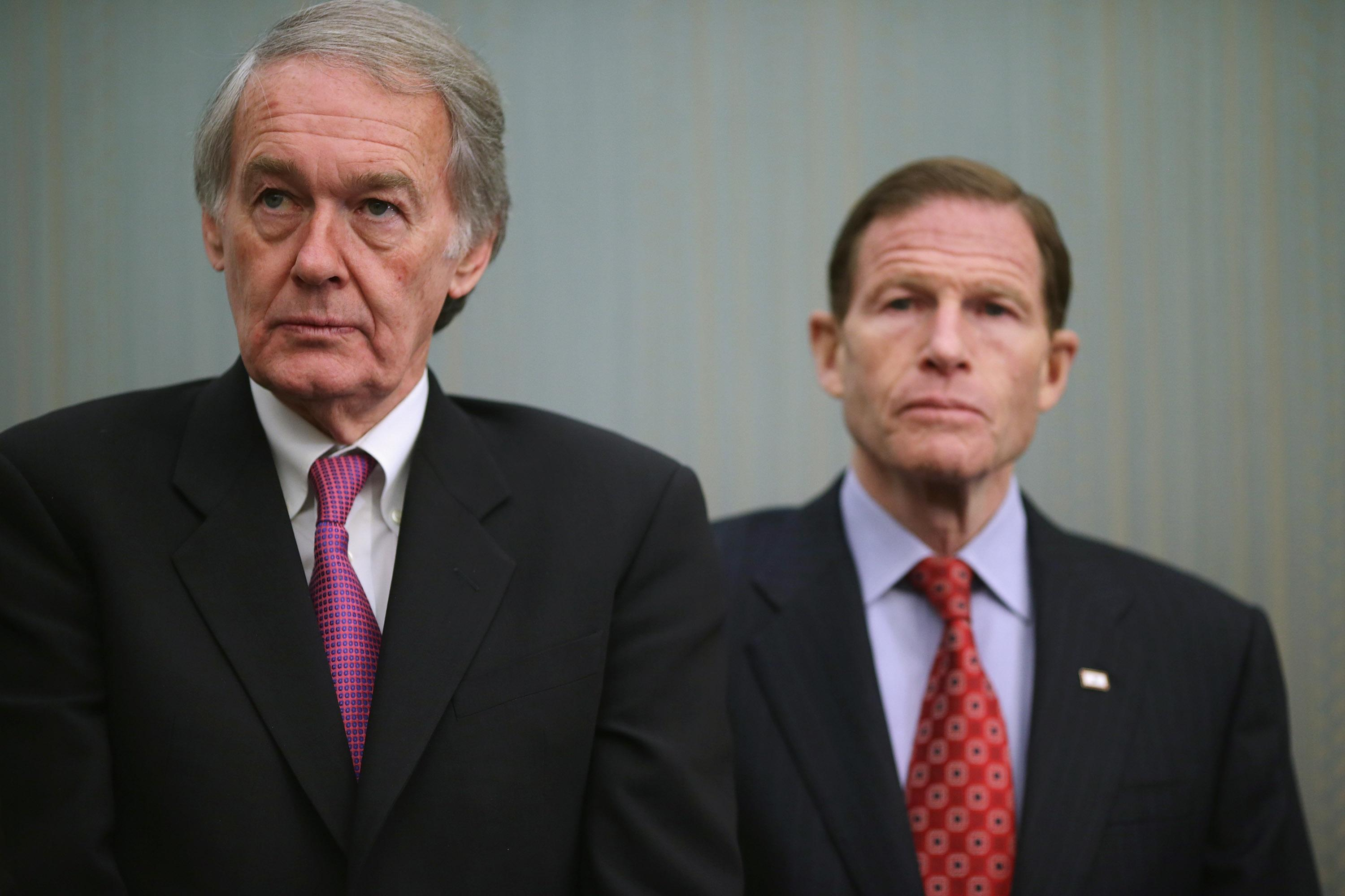 Senators Edward Markey (D-MA) (left) and Richard Blumenthal (D-CT), pictured during a press conference at the US Capitol in Washington, DC, on March 27, 2014 (AFP Photo/Chip Somodevilla)
