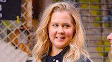 Fans applaud Amy Schumer for 'showing the real side of pregnancy' after she posts vomiting video