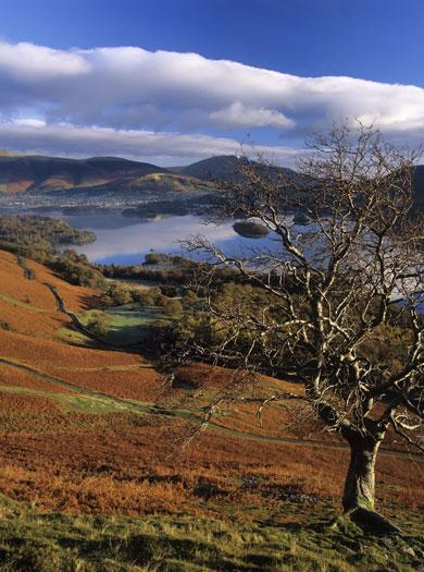 """<p> Of the many charms of the Upper Derwent Valley, Ladybower Reservoir is one of the finest, says <a href=""""http://www.visitengland.co.uk"""" target=""""_blank"""">Visit England</a>. Surrounded by forests, farmland, grazing sheep and spectacular moorland, it's an enchanting place to spend an autumn weekend. You can head up to Bamford Edge for an awe-inspiring view over the resevoir, or across the Ashopton Viaduct for a closer look at the Ladybower Dam itself. Or simply walk among the trees and fields immediately surrounding the reservoir and admire the autumn colours in their full glory.</p>"""